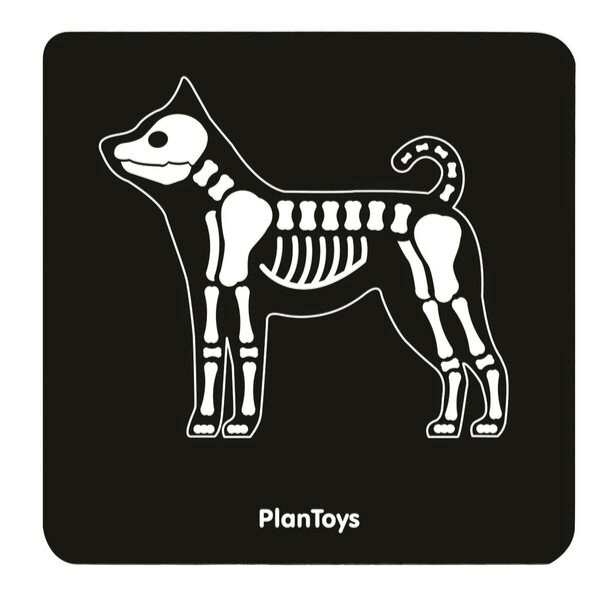3490 Speelgoedwinkel Daantje Plan Toys dierenarts set rontgen hond