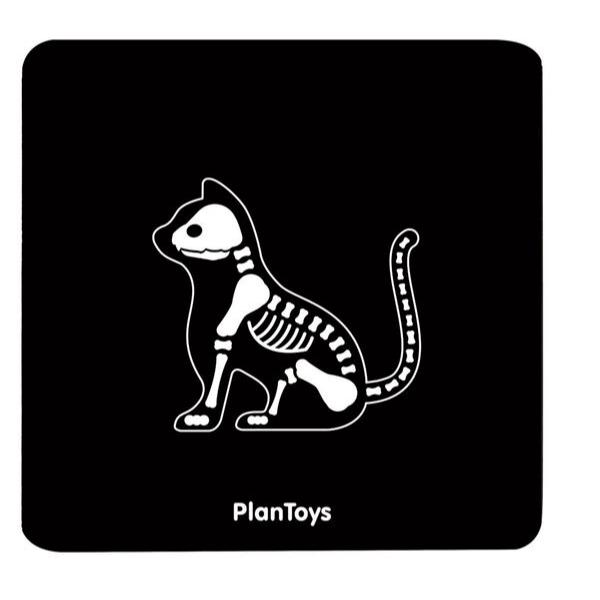 3490 Speelgoedwinkel Daantje dierenarts set Plan Toys detail kat