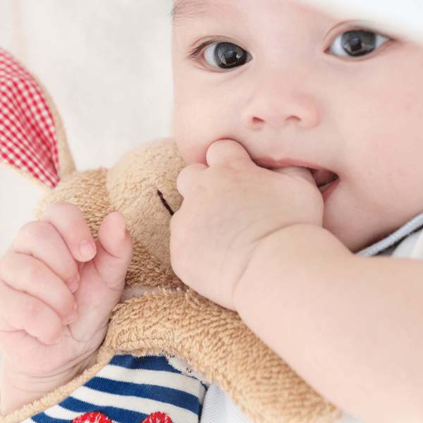 40503 Speelgoedwinkel Daantje Sigikid knuffeldoek hond baby