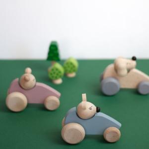 Speelgoedwinkel Daantje houten autos kleur kidsboetiek
